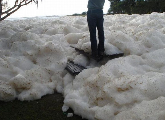 foam australia This is not snow. Ocean foam at Australia's beaches